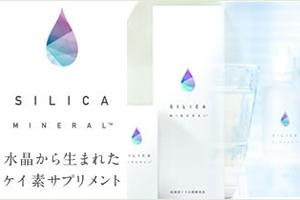 bnr_silica